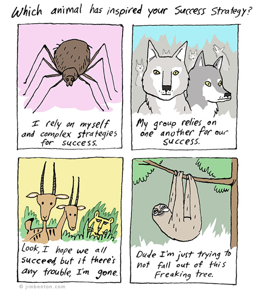 which animal has inspired your success story.jpg