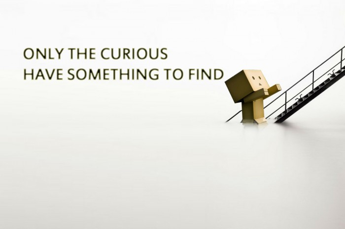 only the curious have something to find.jpg