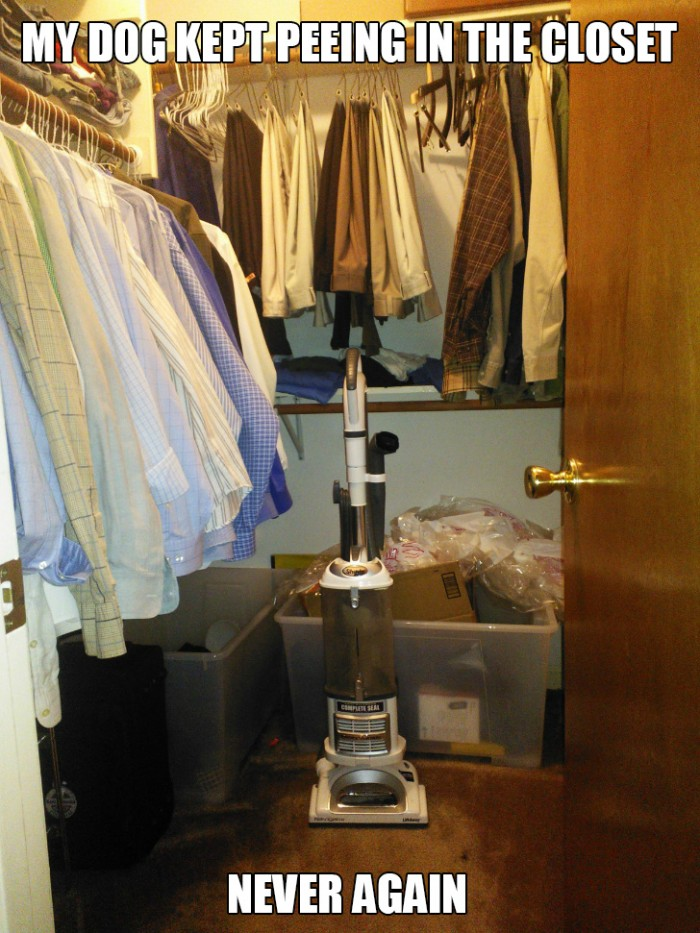 How to prevent closet peeing.jpg