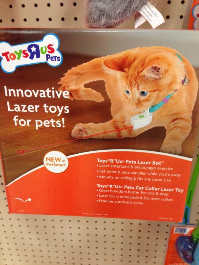 Innovative Lazer toys for pets.jpg