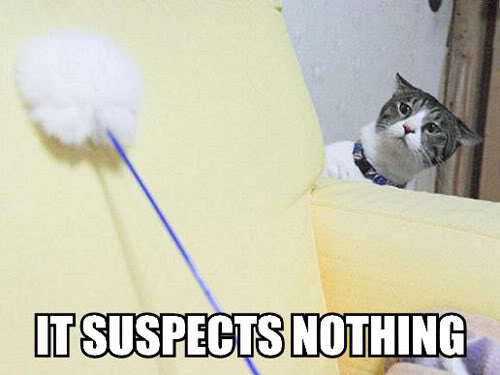 It suspects Nothing.jpg