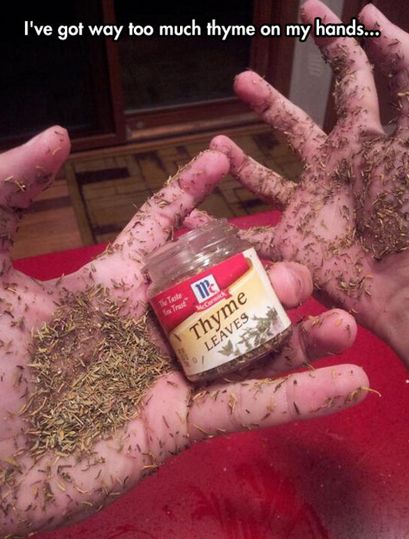 way too much thyme on my hands.png