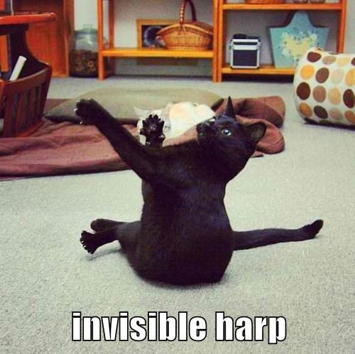 invisible harp.jpg