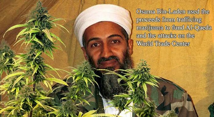 marijuana_disinformation_finest_18