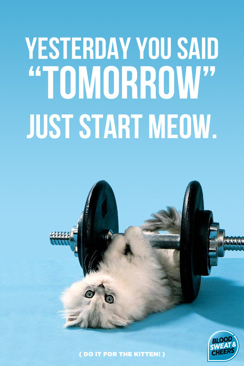yesterday you said tomorrow.jpg