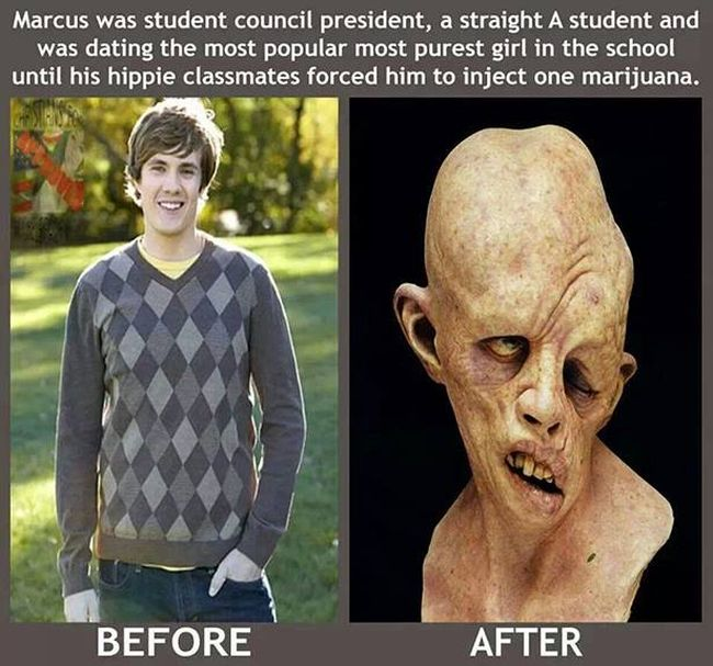 Before and After Weed.jpg