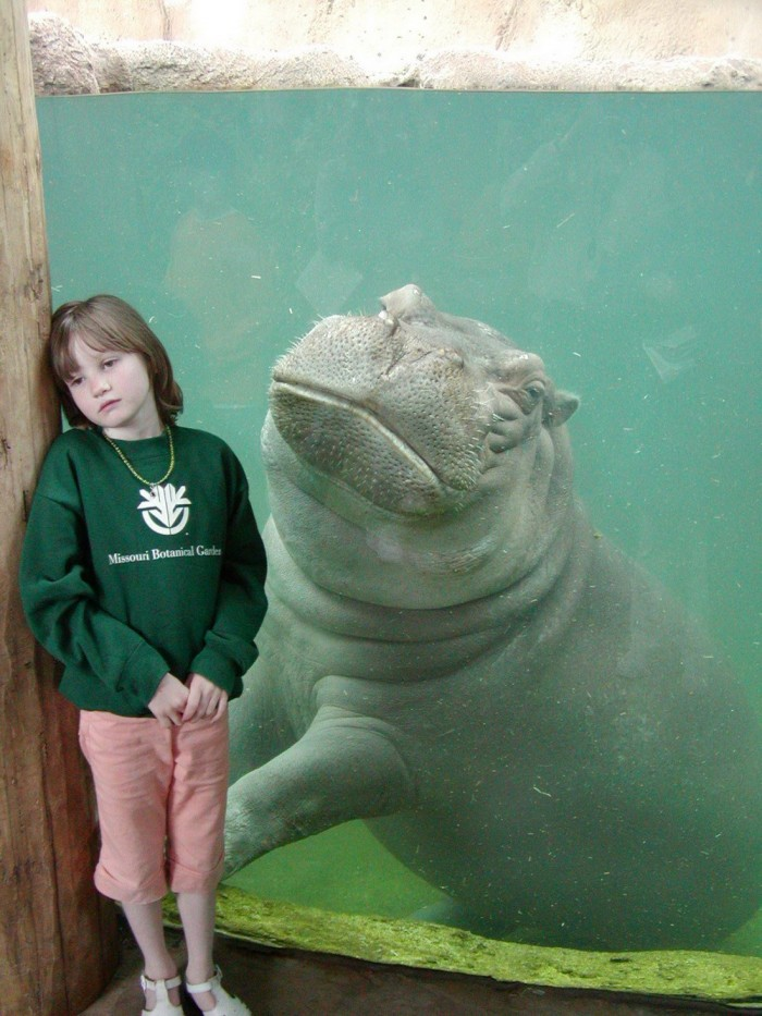 Emo Hippo and friend.jpg
