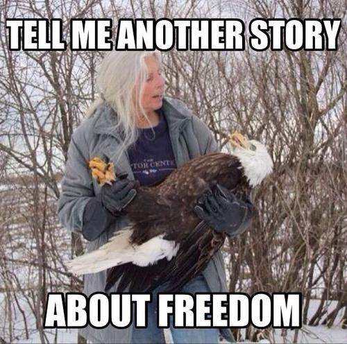 freedom story