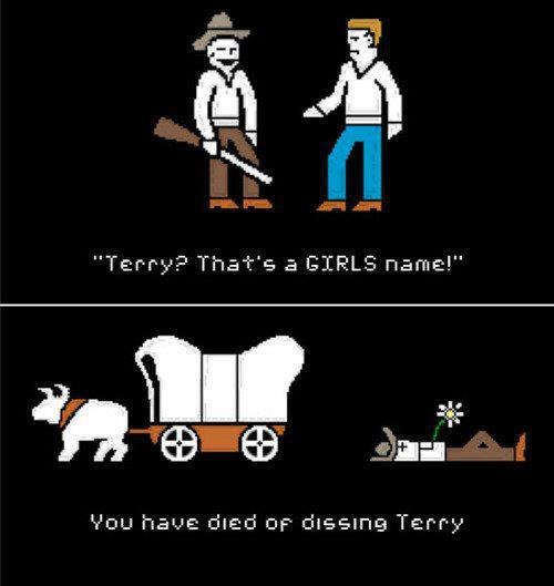 dissing terry You have died of dissing Terry word play wild west Oregon Trail game funny dissing
