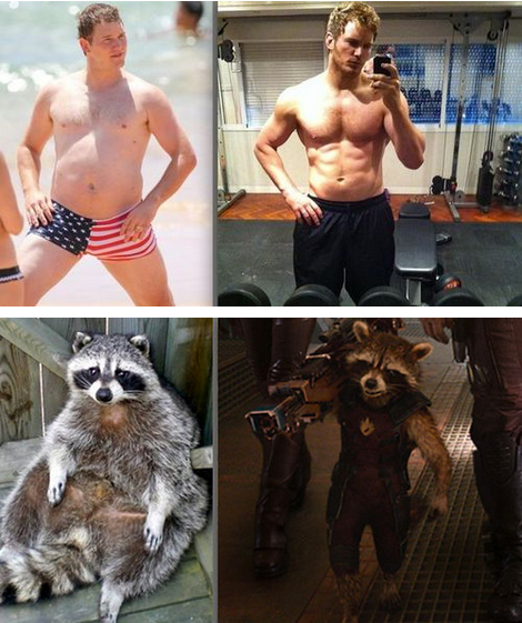 same pratt and rocket racoon before and after same pratt and rocket racoon   before and after Humor Guardians of the Galaxy chris pratt
