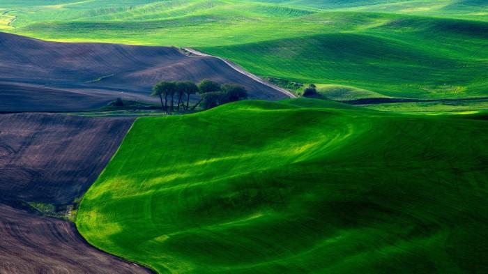 greenscape.jpg