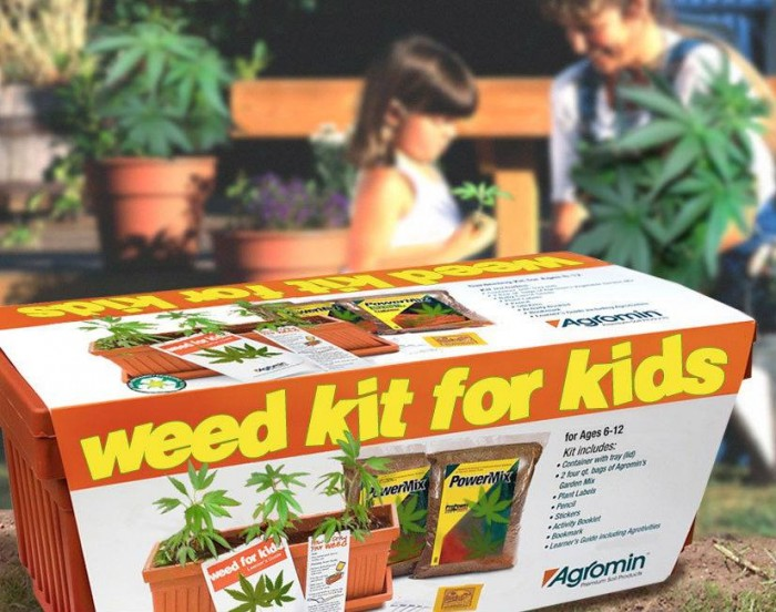 weed kit for kids.jpg