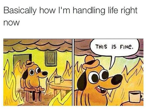 How I'm handling life right now.jpg