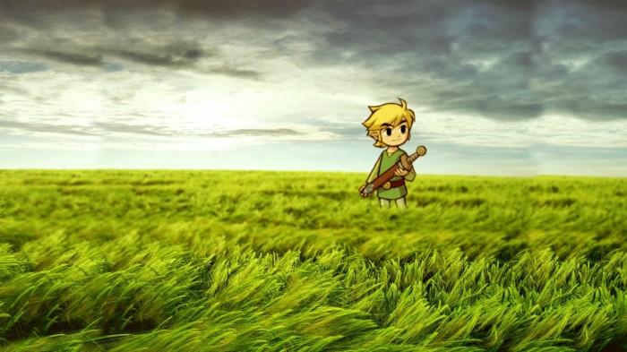 Link in a Field.jpg