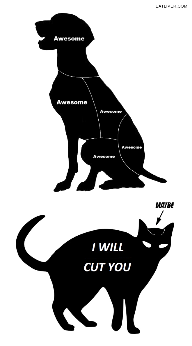 Pet Petting Guide.png