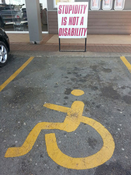 stupidity is not a disability.jpg