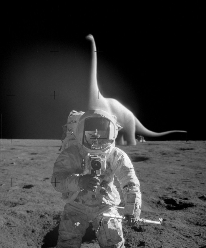 Faked Moon Landing Proof.jpg