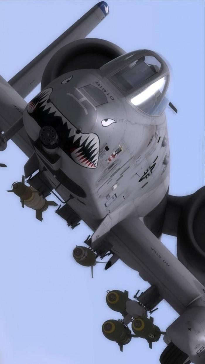 shark face plane aviation
