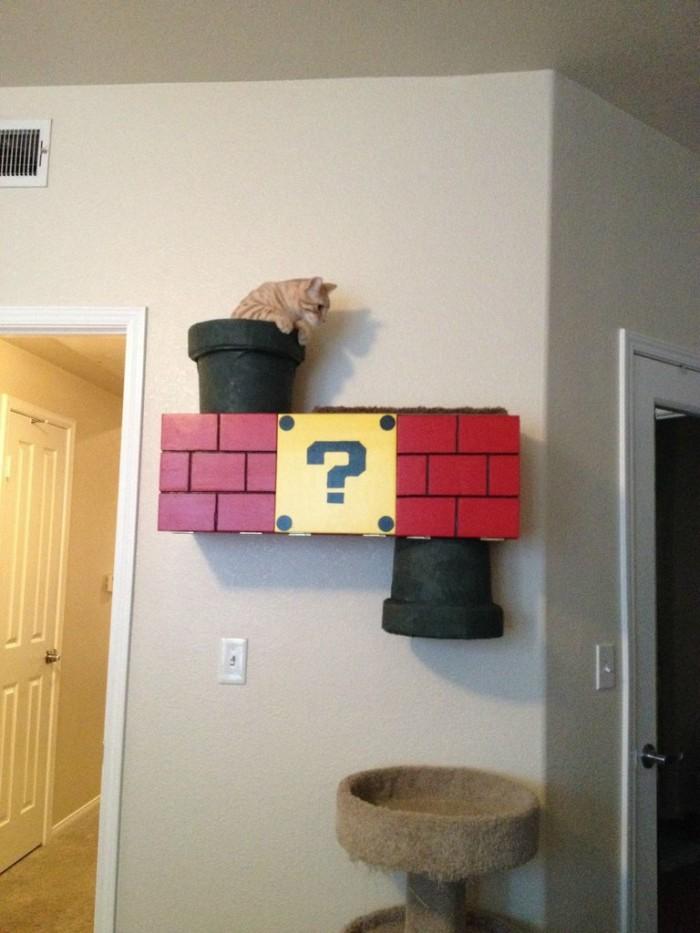 Cat Portals