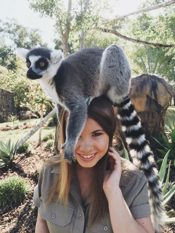 Bindi Irwin with a lemur on her head 700x933 Bindi Irwin with a lemur on her head