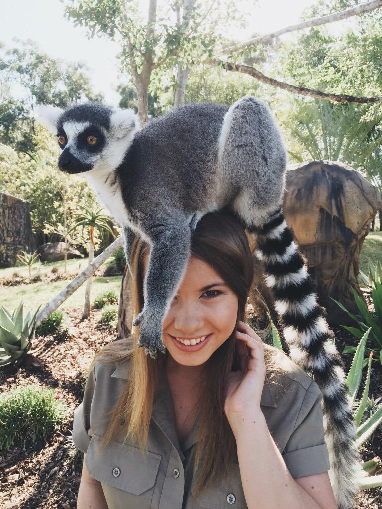 Bindi Irwin with a lemur on her head.jpg