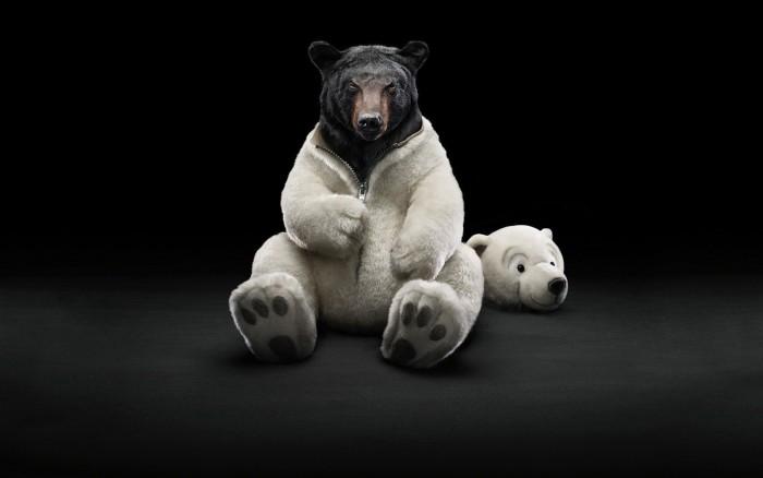 Bear Suit.jpg