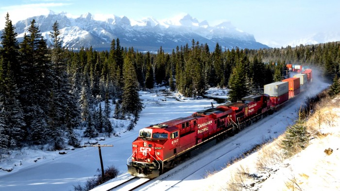 Forest Train.jpg
