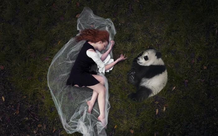 Panda Napper.jpg
