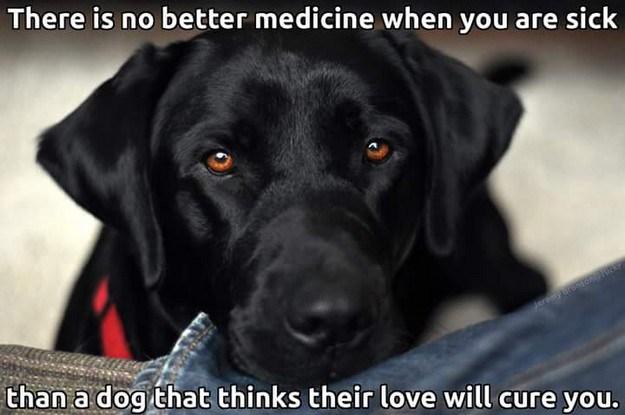 Best Medicine.jpg