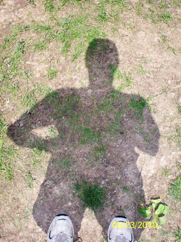 Shadow Bush.jpg