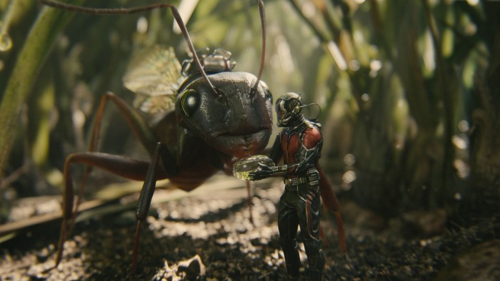 Antman - Feeding Time.jpg