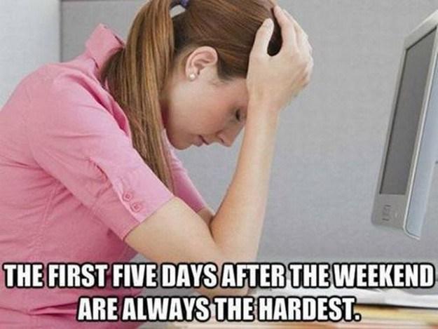 The First 5 days.jpg