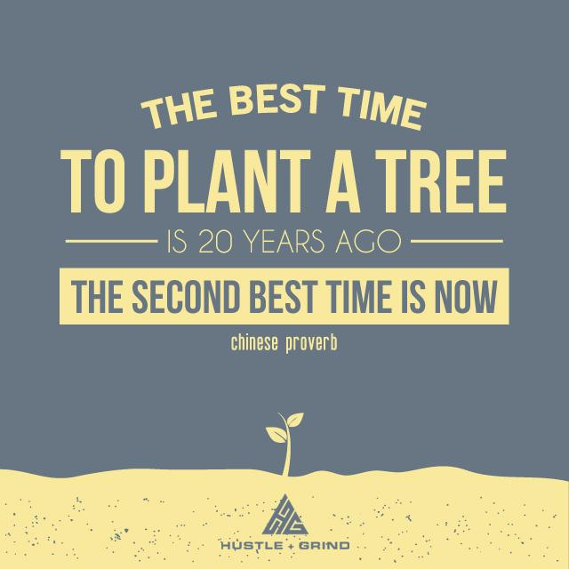 The best tiem to plant a tree.jpg