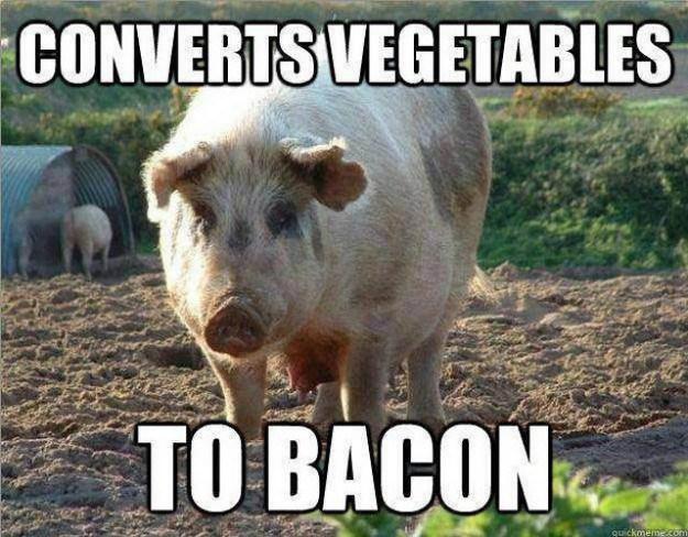 Vegetable Converter.jpg
