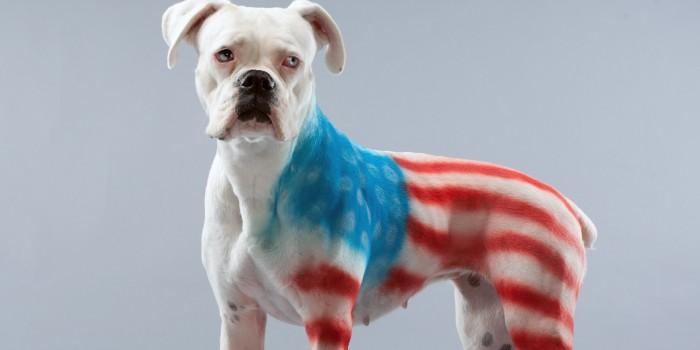patriotic bitch.jpg