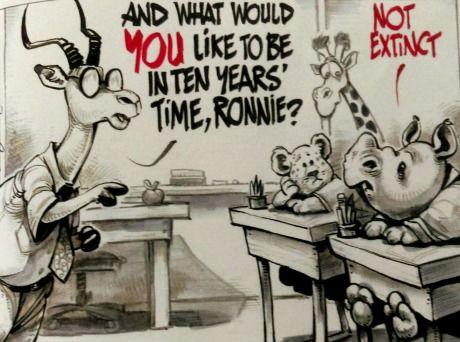 rhino_in_ten_years