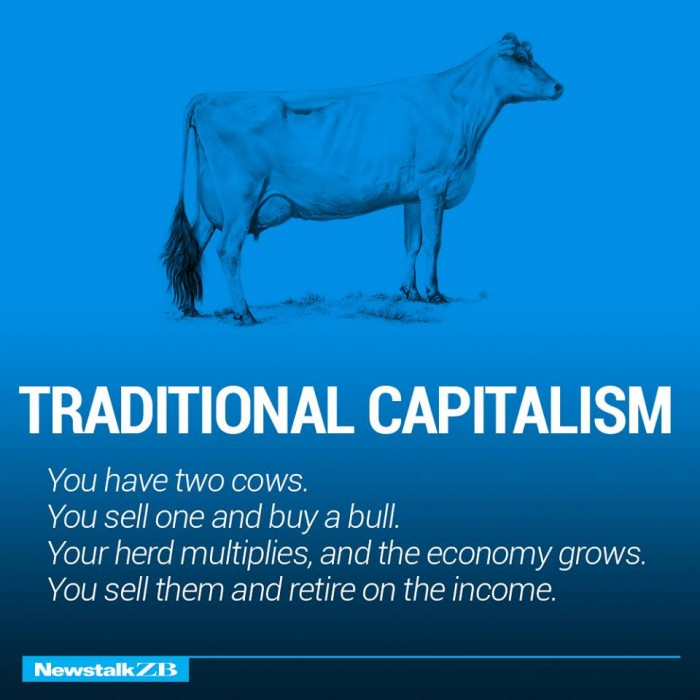 cowconomics animals