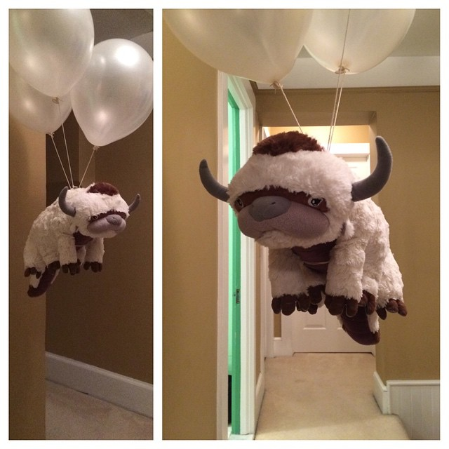 Flying appa.jpg