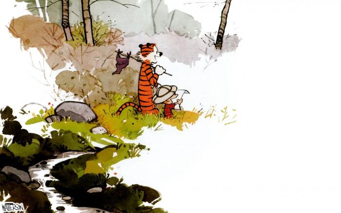 Calvin and Hobbes - Final Panel.jpg