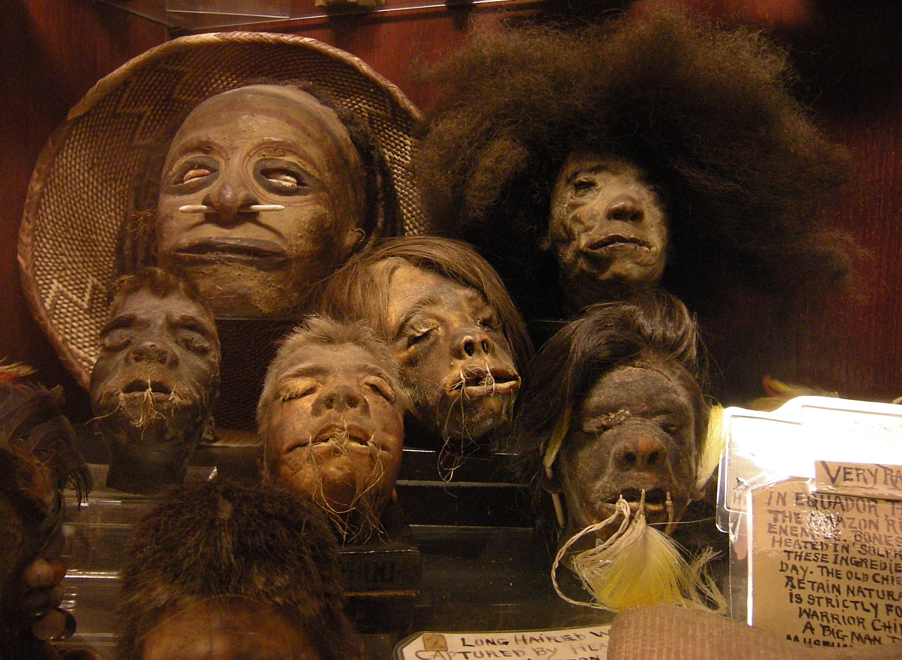 Seattle_-_Curiosity_Shop_-_shrunken_heads_02A