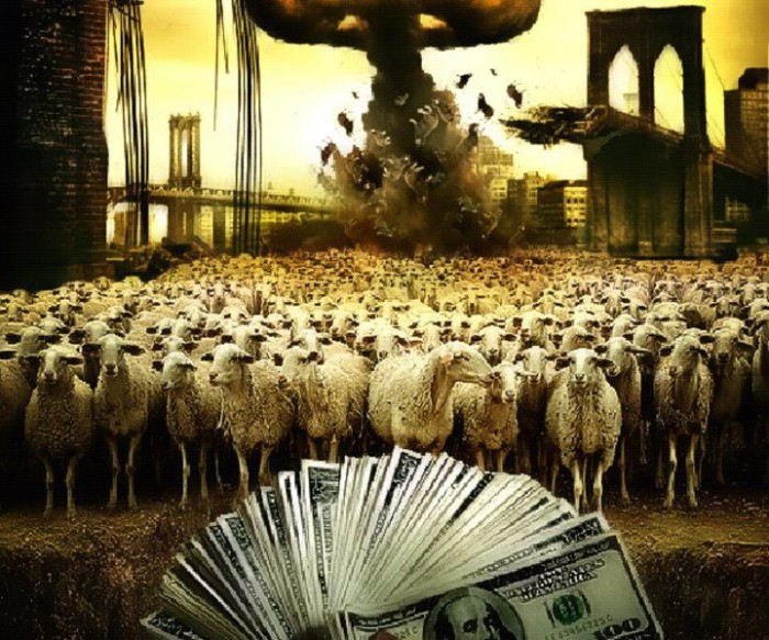 Sheep like money.jpg