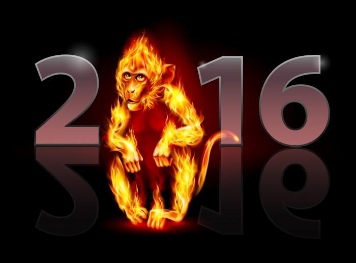 2016 Fire Monkey.jpg