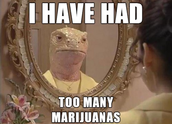 I have had too many marijuanas.jpg