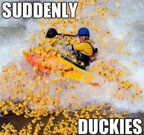 Suddenly Duckies.jpg