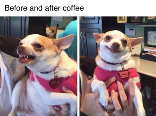before and after coffee.jpg