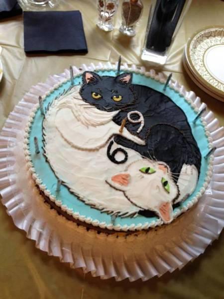 69 Cat Cake 69 Cat Cake