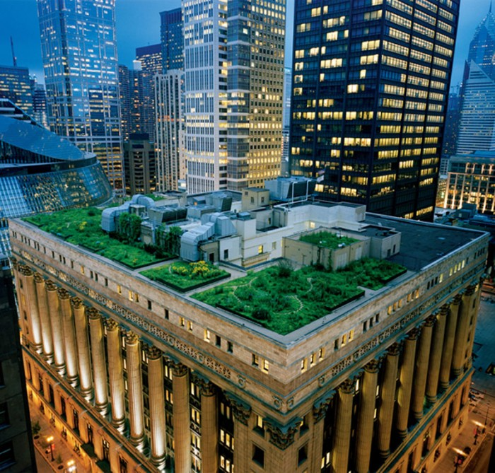 Chicago City Hall Rooftop Garden