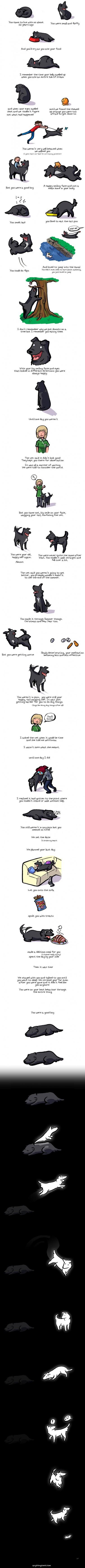 a good dog.jpg