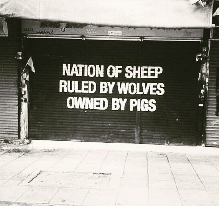 nation of sheep2 700x659 Nation of sheep society Politics politicians nation