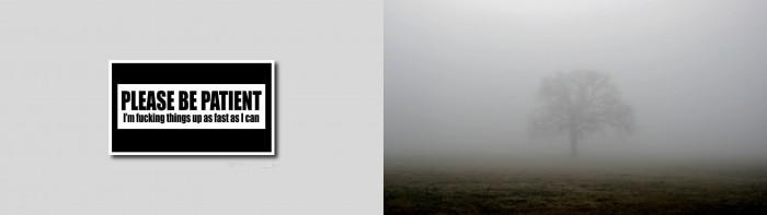 Fucking it up - The Mist
